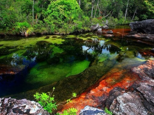 Caño Cristales (English: Crystal Channel) is a Colombian river located in the Serrania de la Macarena province of Meta. It's a tributary of the Guayabero River. The river is commonly called the