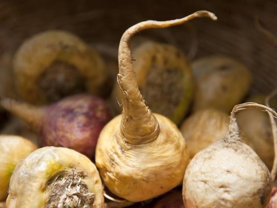 This sweet root vegetables has been nicknamed Peruvian Viagra, and animal studies have indicated some aphrodisiac qualities, although this hasn't been extensively tested on humans. It is also thought to increase stamina and heighten awareness.