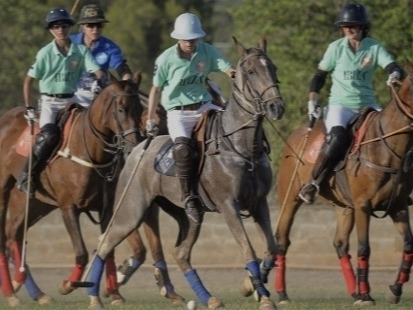 The typical 'rich game', polo is a sport that exudes wealth. From the royal family to superstars such as Clark Gable and Spencer Tracy, polo has held appeal for generations of the rich.