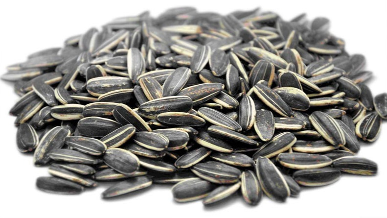 One of the most bewildering Spanish habits for foreigners is Spaniards' addition to sunflower seeds, or pipas. Spaniards seem to be born with the innate ability to eat sunflower seeds at rapid speed, separating the seed from the shell, which they discard, usually on the ground if they're outside.