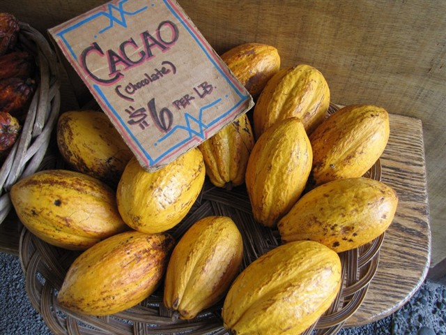Cacao has been recognised as a superfood for a while now, and the good news is that Colombia produces large quantities of cacao throughout the country. Raw cacao, in particular, is known for being one of the ultimate antioxidant foods in nature, with 40 times more antioxidants than blueberries, as well as high quantities of calcium and magnesium.