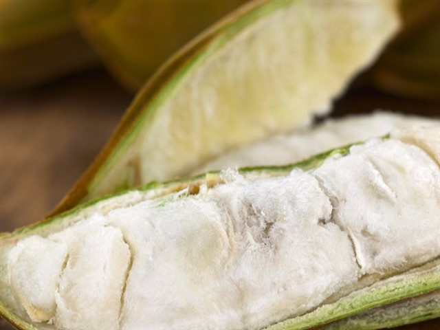 Pacay, or ice cream bean fruit, is a type of legume that grows throughout Colombia. The soft, white flesh surrounding the beans from the pod are also super-healthy, rich in vitamins A, B and C, fibre, protein and antioxidants. Pacay is also an anti-inflammatory, an immune-system booster and an antioxidant.