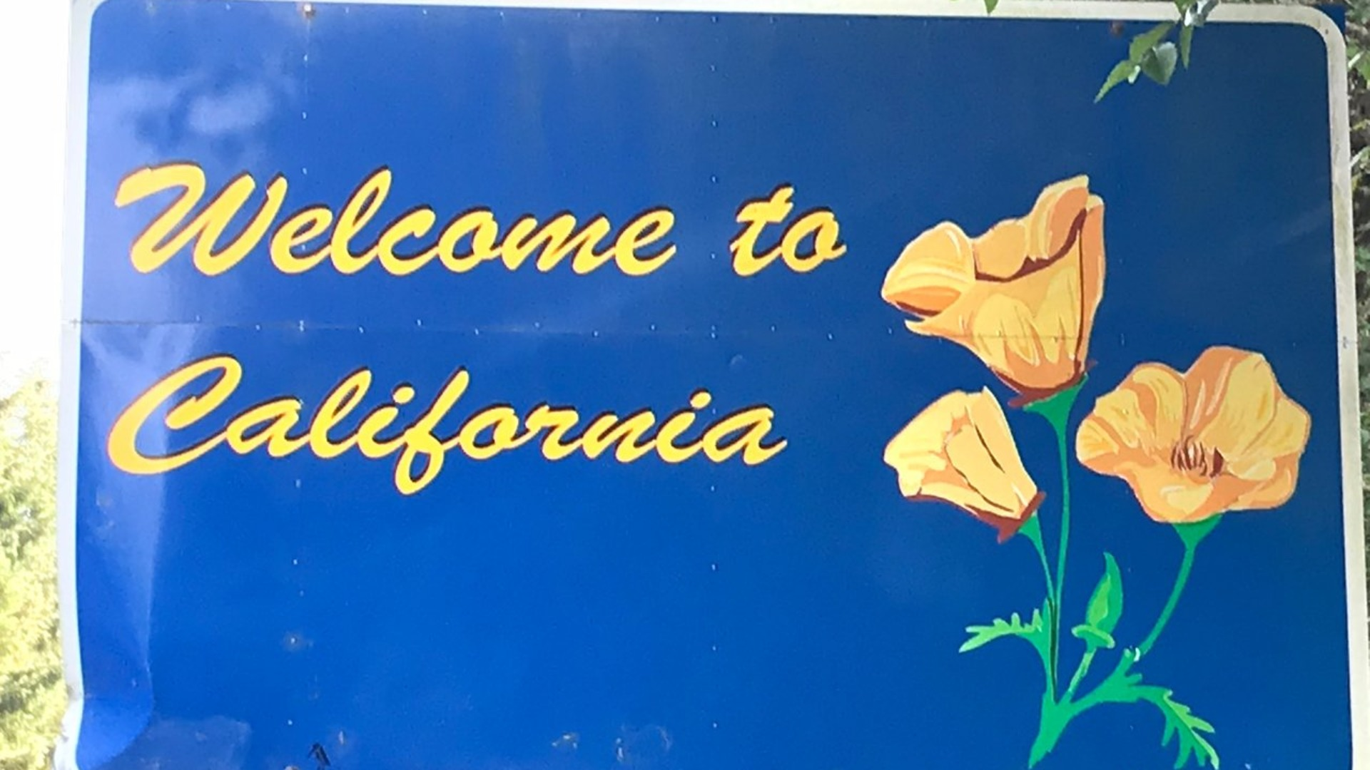 10 Reasons People are Still Moving to California